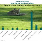 Sun City Grand Real Estate Market Update - Week Ending October 25, 2009
